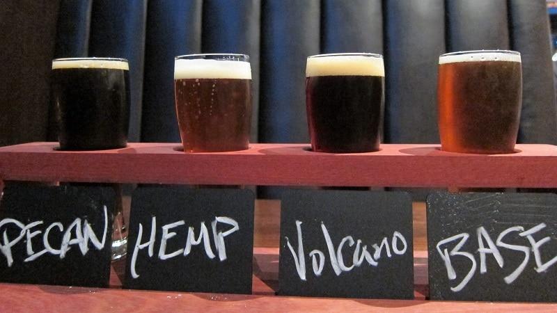 Craft beer tasting Wellington