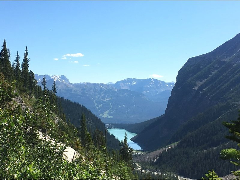 Lake Louise as seen from Plain of the Six Glaciers trail