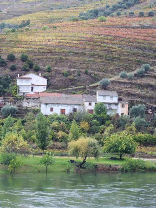 Alto Douro wine region Portugal